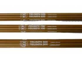 Triumph Carbon Arrows 5